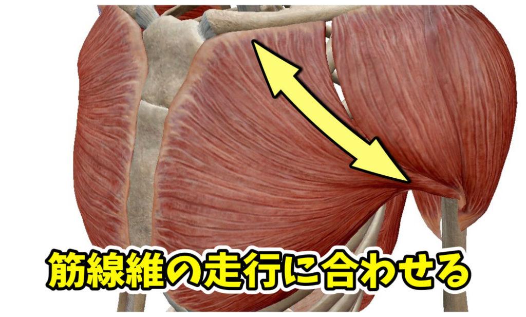 やりすぎ注意。大胸筋上部に効きまくるインクラインフライのフォームとは。