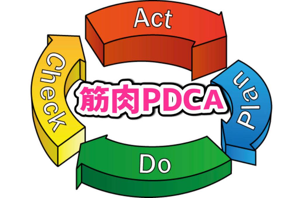 【筋肉PDCA】成功確率がぐっと上がる!初心者の為の筋トレ計画の立て方とは。