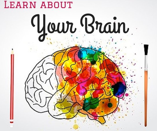 脳科学から教わる、筋トレのやる気がでない時を打破する最も効果的な方法とは。