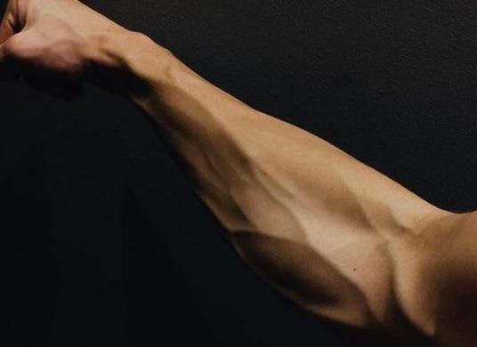 結構女性受けが良い?二の腕の血管を育てて浮き立たせよう。
