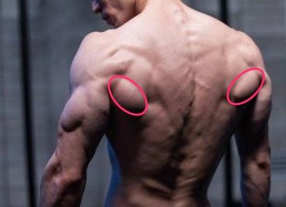 【大円筋】逆三角形には必須。脇の下のポコッとした筋肉を発達させる方法